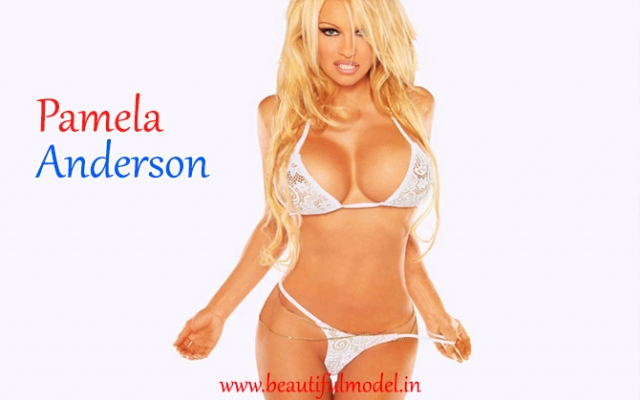 Pamela Anderson Measurements Height Weight Bra Size Age Affairs