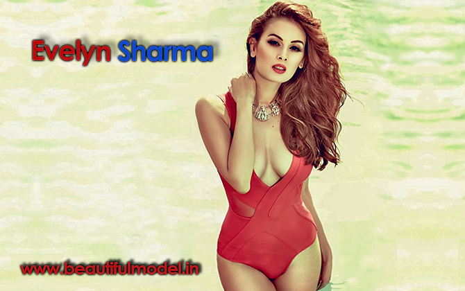 Evelyn Sharma Measurements Height Weight Bra