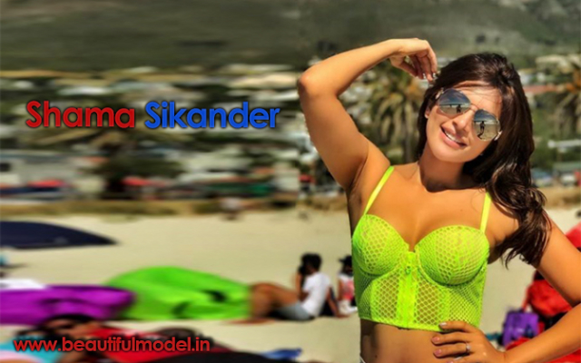Shama Sikander Measurements Height Weight Bra Size