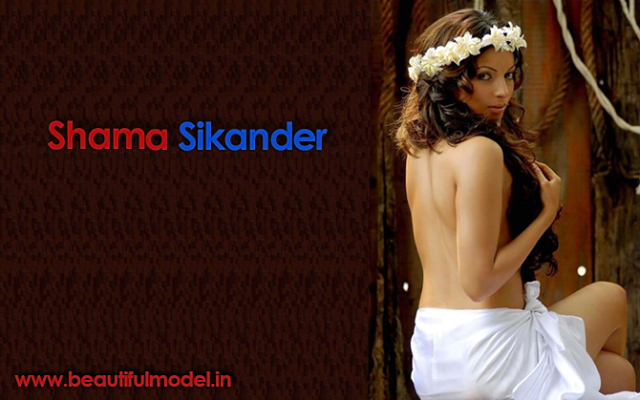 Shama Sikander Measurements Height Weight
