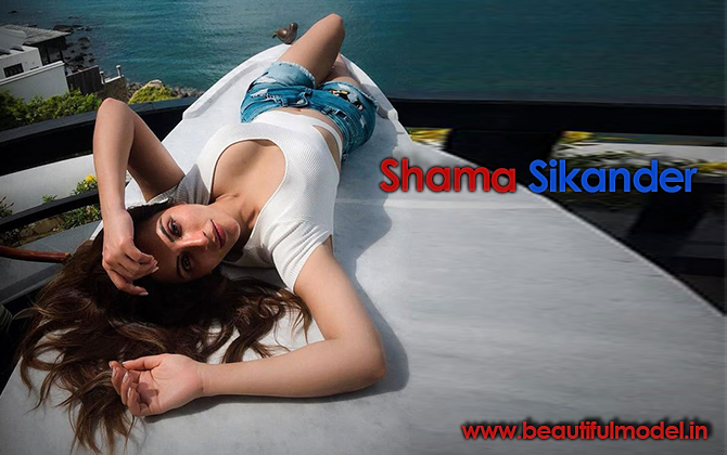 Shama Sikander Measurements Height Weight Bra Size Age