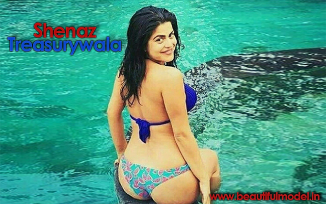 Shenaz Treasurywala Measurements Height Weight Bra Size Age Boyfriends