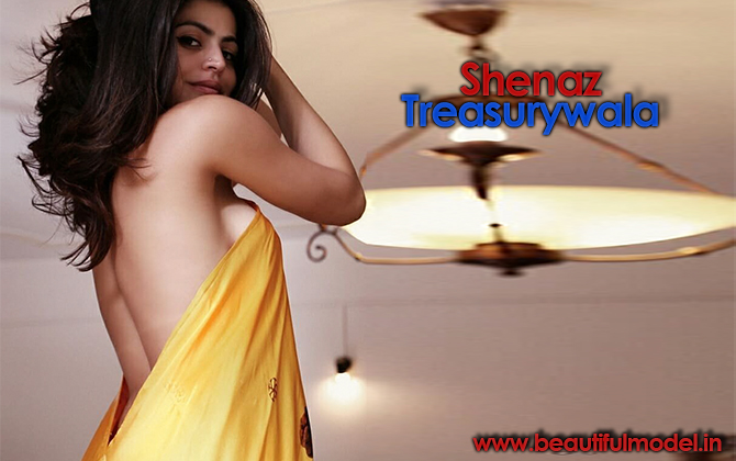Shenaz Treasurywala Measurements Height Weight Bra Size Age Boyfriends Affairs