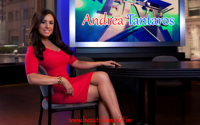 Andrea Tantaros measurements height weight bra size age boyfriends affairs