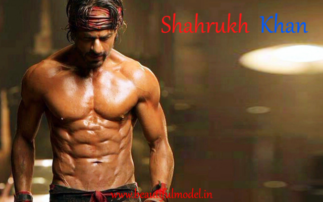 ShahRukh Khan Height Weight Age Biceps Size Body Stats