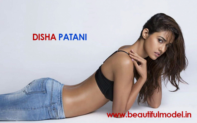 Disha Patani Measurements Height Weight Bra Size Age Boyfriends