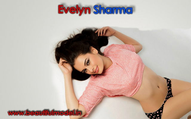 Evelyn Sharma Measurements Height Weight Bra Size