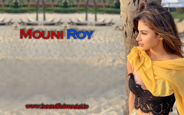 Mouni Roy Measurements
