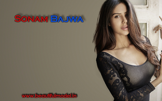 Sonam Bajwa Measurements Height Weight