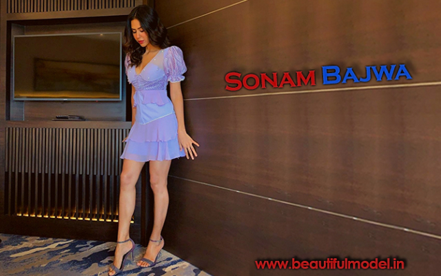 Sonam Bajwa Measurements Height Weight Bra Size Age Boyfriends