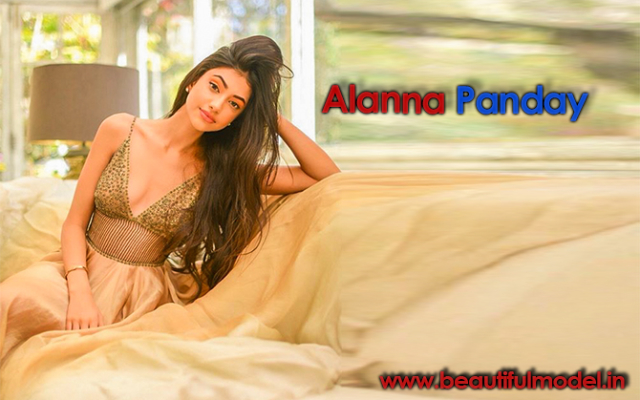 Alanna Panday Measurements Height Weight Bra Size Age Boyfriends Affairs