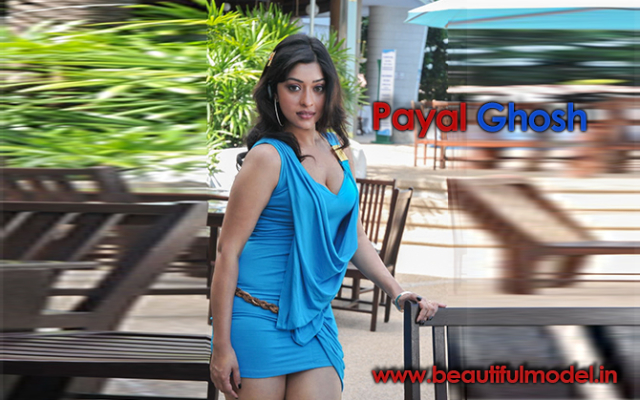 Payal Ghosh Measurements Height Weight Bra