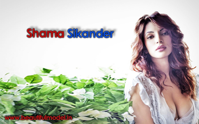 Shama Sikander Measurements Height Weight Bra Size Age Boyfriends